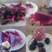 Dragon and Snake Fruit